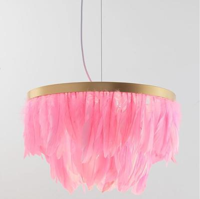 Lustre plumes roses