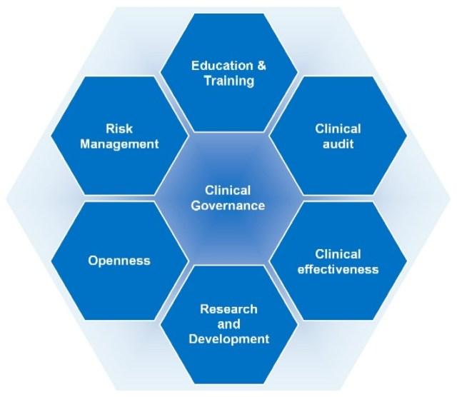 pillars of clinical governance