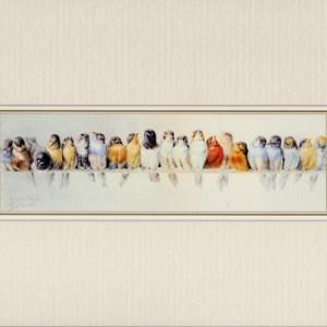 Bird Print matted in cream