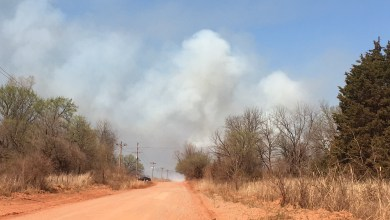 Photo of Volunteer Firefighters handle north grass fire