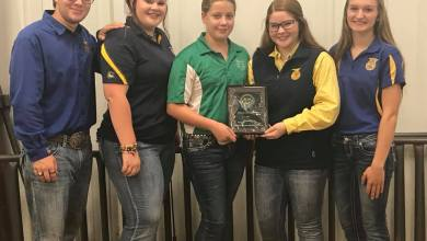 Photo of Livestock Team Represents at County Fair