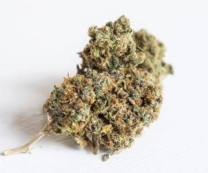 Luther Town Board, medical marijuana ordinance