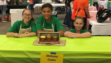 Photo of Luther 4H Team Earn Cupcake Prize