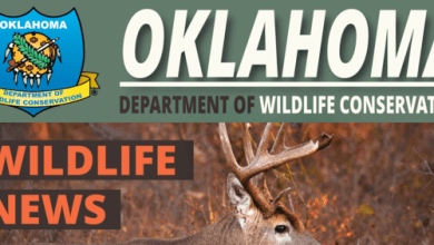 Photo of Proposed Changes to Fish, Wildlife Rules Now Open for Public Comments