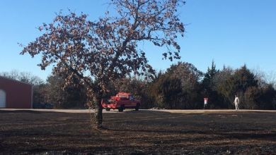 Photo of Fire Departments Extinguish New Year's Day Grass Fire