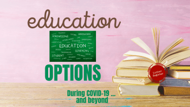 Photo of COVID 19 School Options: Home Education