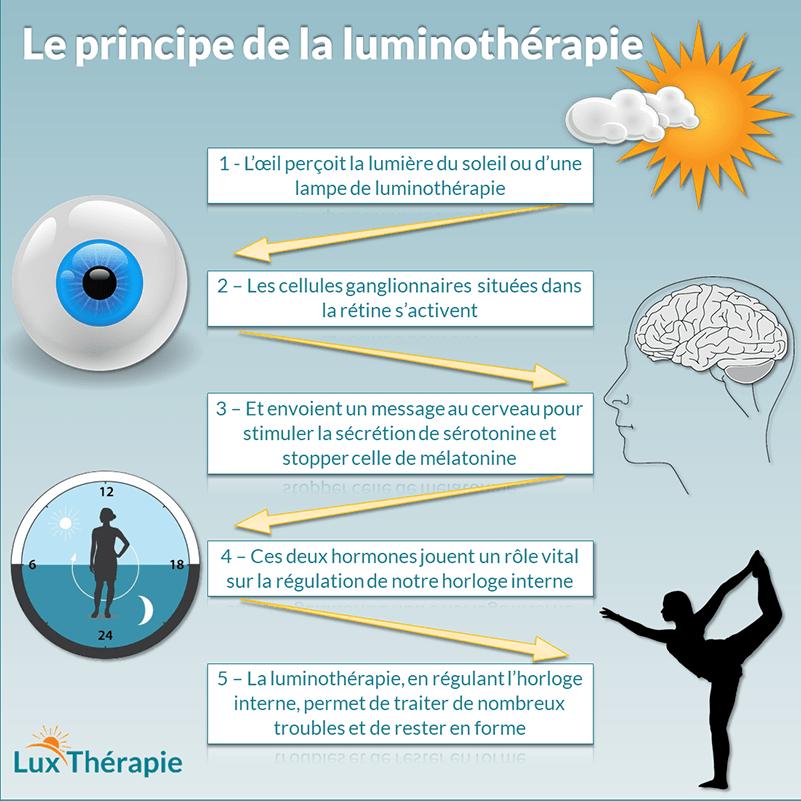 Infographie sur le principe de la luminothérapie