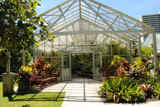 Top 10 Sightseeing Attractions in Honolulu Foster Botanical Garden