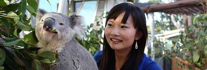 Top 7 Family Activities in Sydney Taronga Zoo