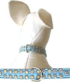 dog collars light blue