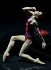 L'altro Casanova - Polina Semionova - ph Brescia Amisano Teatro alla Scala 178_256_IMG_7299