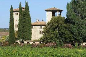 Chateau de Berne - Vue Château 1 copie