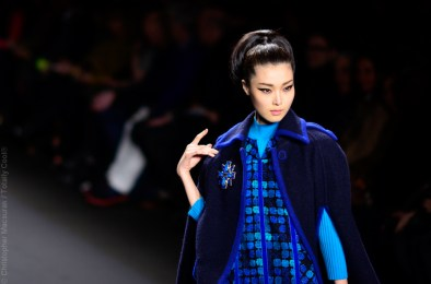 Anna Sui Fall Winter 2013-16