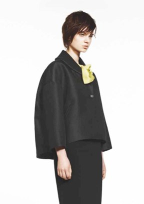 ANAHIDE-SAINT-ANDRE-FW13-14-Look-Book-15