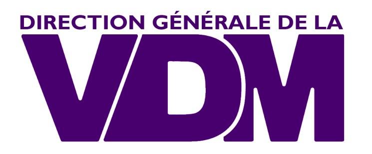 VDM-LA-SERIE-LOGO