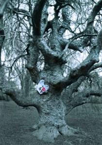 1 Elie Laurent Badessi the Tree_of_Love_Brooklyn_2012 -