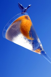 GREYGOOSE-CAMIONNETTE-CANNES-40
