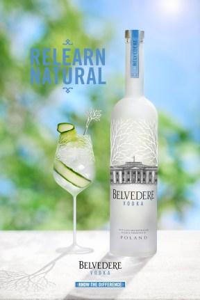 Cocktail Belvedere 2017 - Concombre et Fleur de Sureau Ambiance