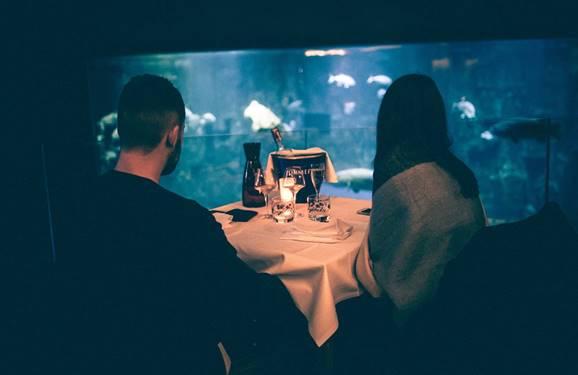 Tous les samedis soirs, l'Aquarium de Paris ouvre ses portes avec les Nights de l'Aquarium