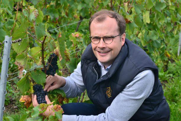 Vendanges Veuve Clicquot - photo Michel Jolyot (178)