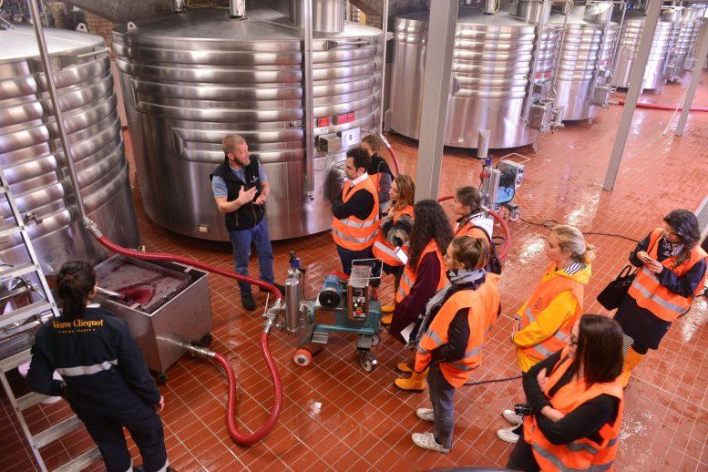 Vendanges Veuve Clicquot - photo Michel Jolyot (306)