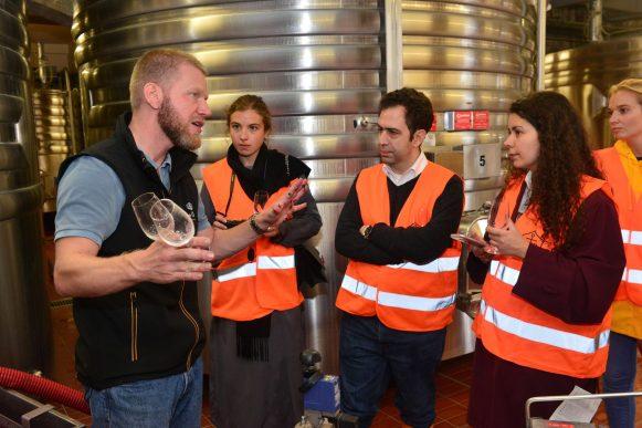 Vendanges Veuve Clicquot - photo Michel Jolyot (316)
