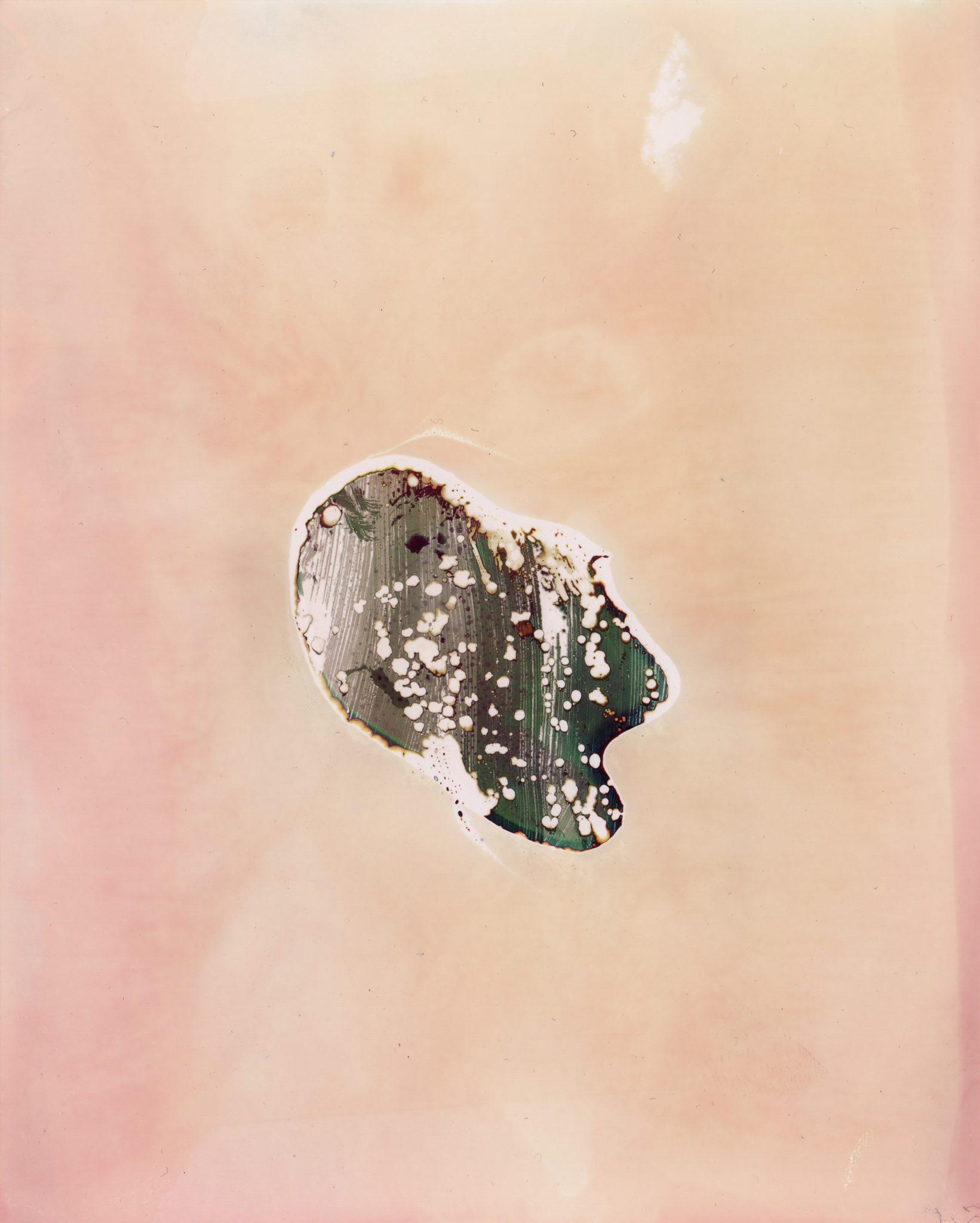 Drops, L'eau d'Issey - Christelle Boulé Grand musee du parfum
