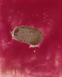 Drops, Lipstick Rose - Christelle Boulé Grand musee du parfum