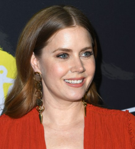 """BEVERLY HILLS, CA - DECEMBER 11: Amy Adams arrives at the Annapurna Pictures, Gary Sanchez Productions And Plan B Entertainment's World Premiere Of """"Vice""""at AMPAS Samuel Goldwyn Theater on December 11, 2018 in Beverly Hills, California. (Photo by Steve Granitz/WireImage)"""