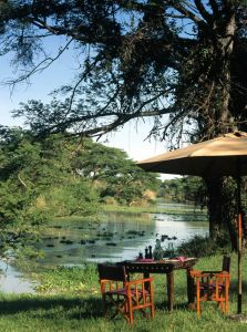 Out of Africa andBeyond… Part one of the safari adventure of a lifetime 2