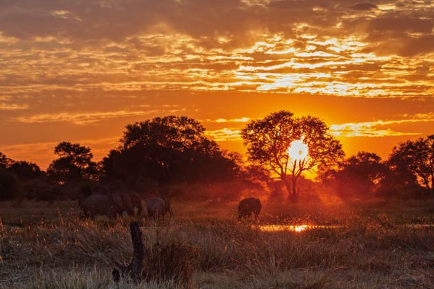 Journey to the Heart of Botswana with Alexander McCall Smith
