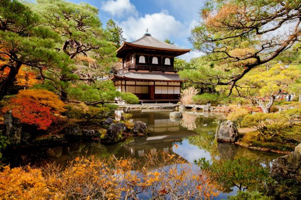 A one-off opportunity to see the botanical beauty of Japan