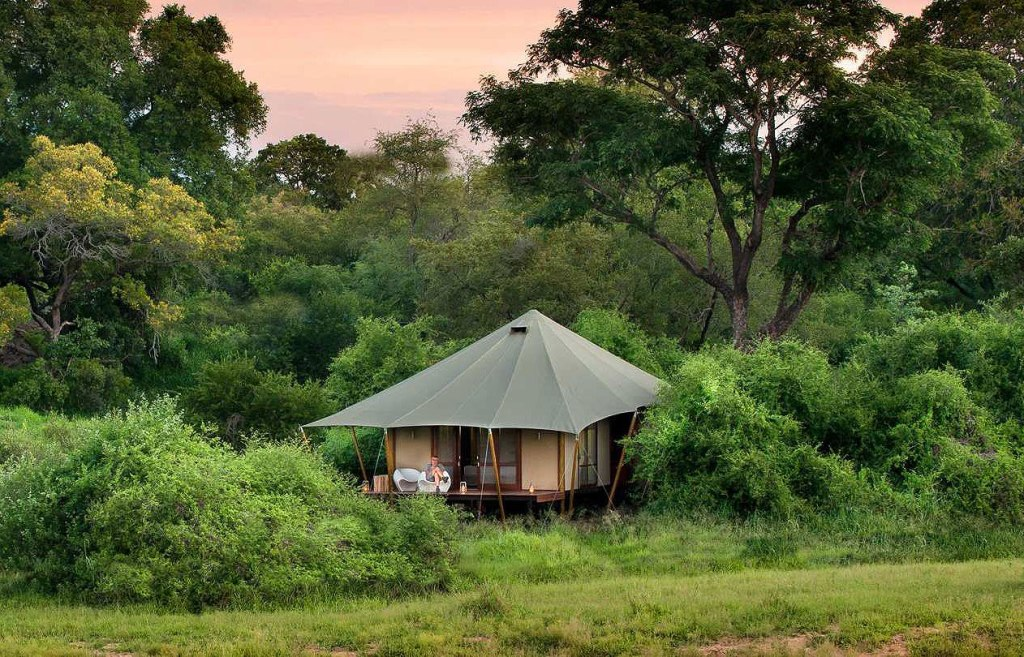 Ngala Tented Camp travel review