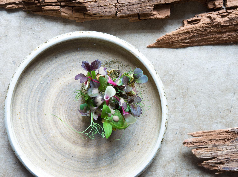 Vegan Menus at Michelin-Starred Restaurants for Veganuary 6