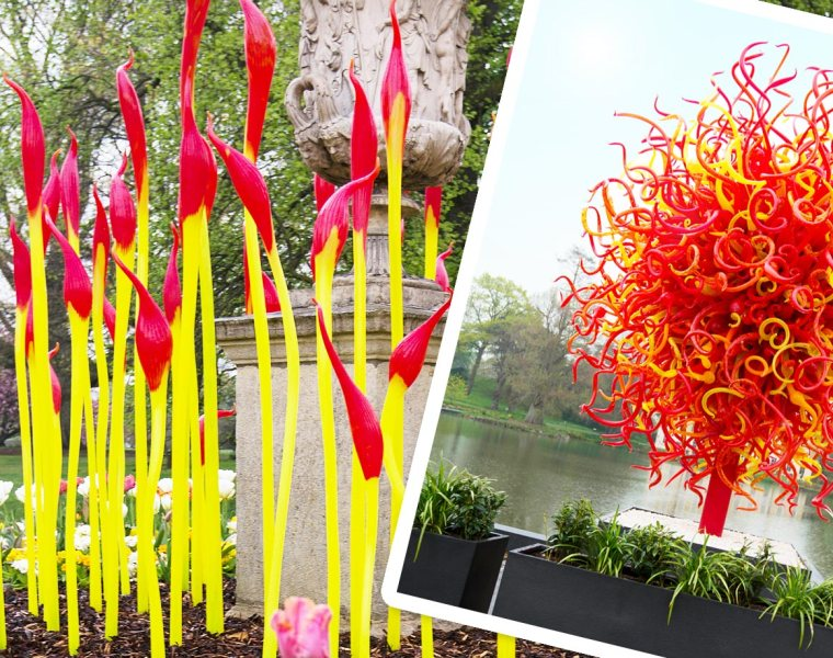 Chihuly: Reflections on Nature