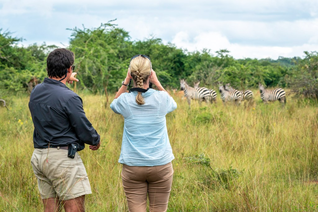 Magashi offers exceptional game-viewing