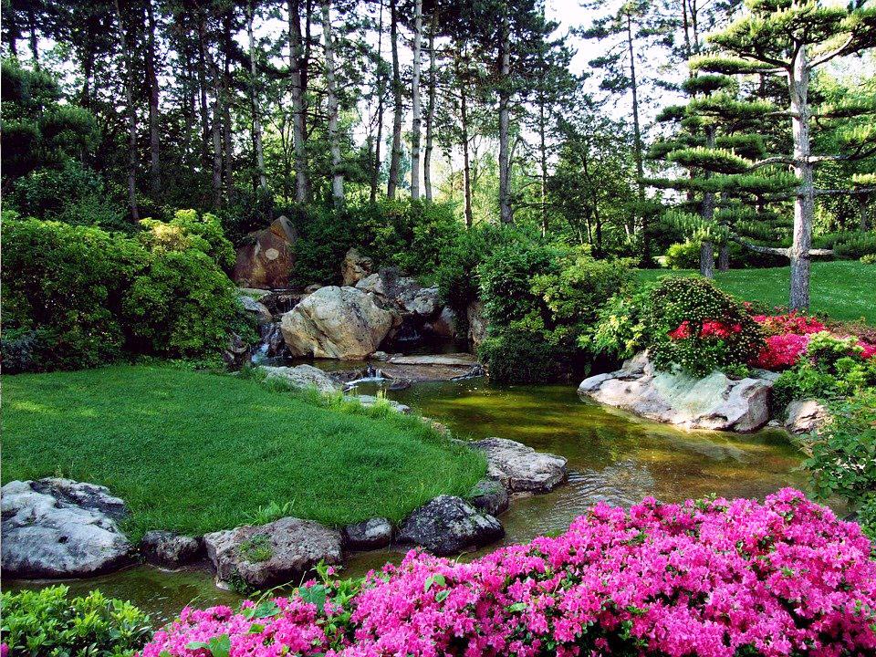 A traditional Japanese Garden