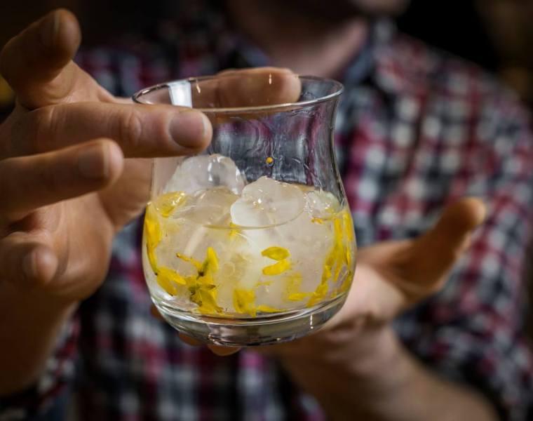 Drink Twinning with Botanist Gin