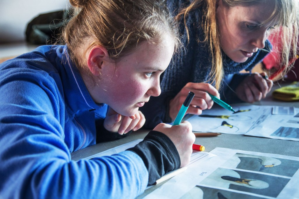 WWT's 'wild' home learning hub is aiming to be not only educational but, fun too