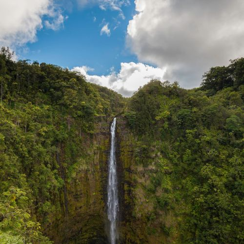 Akaka falls, tropical waterfalls on the Big Island of Hawaii, USA.