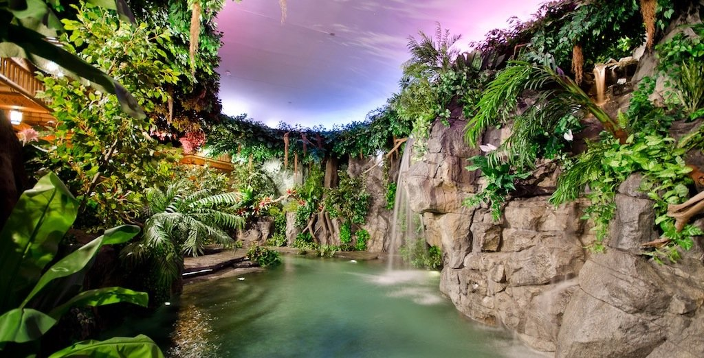 jungle-pool-for-sale