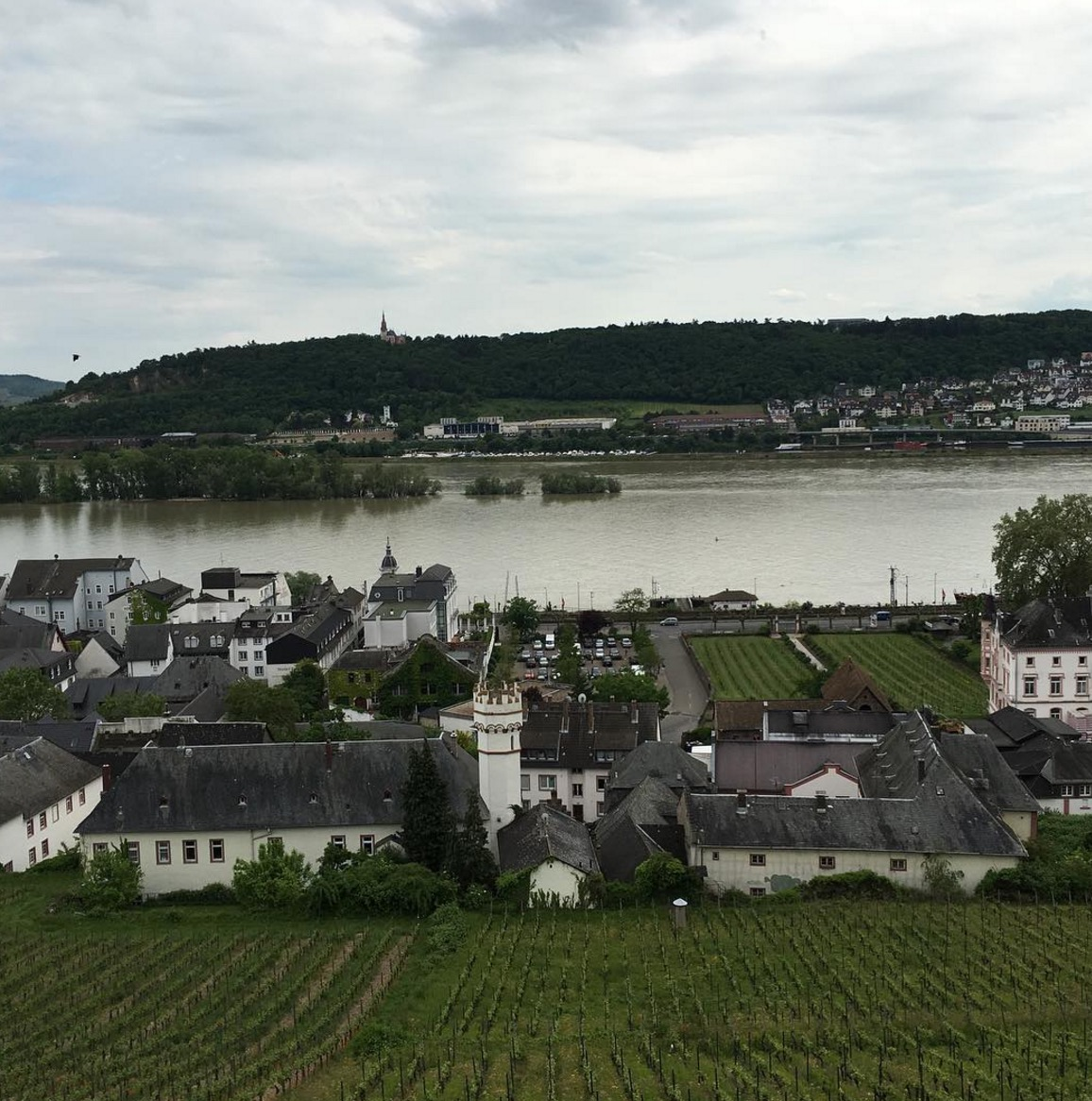 What It's Like to Sail on a Viking River Cruise as a Young Person
