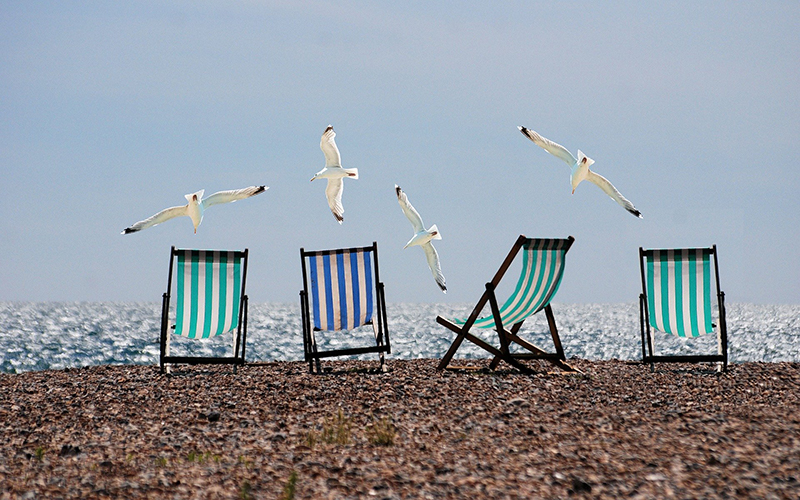 Summer deck chairs and gulls