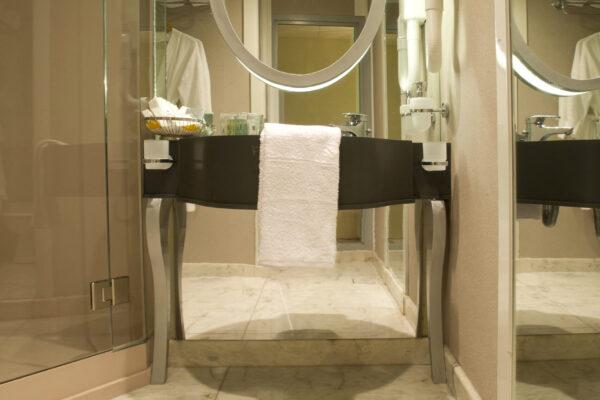 Voyager Standard bathroom 1