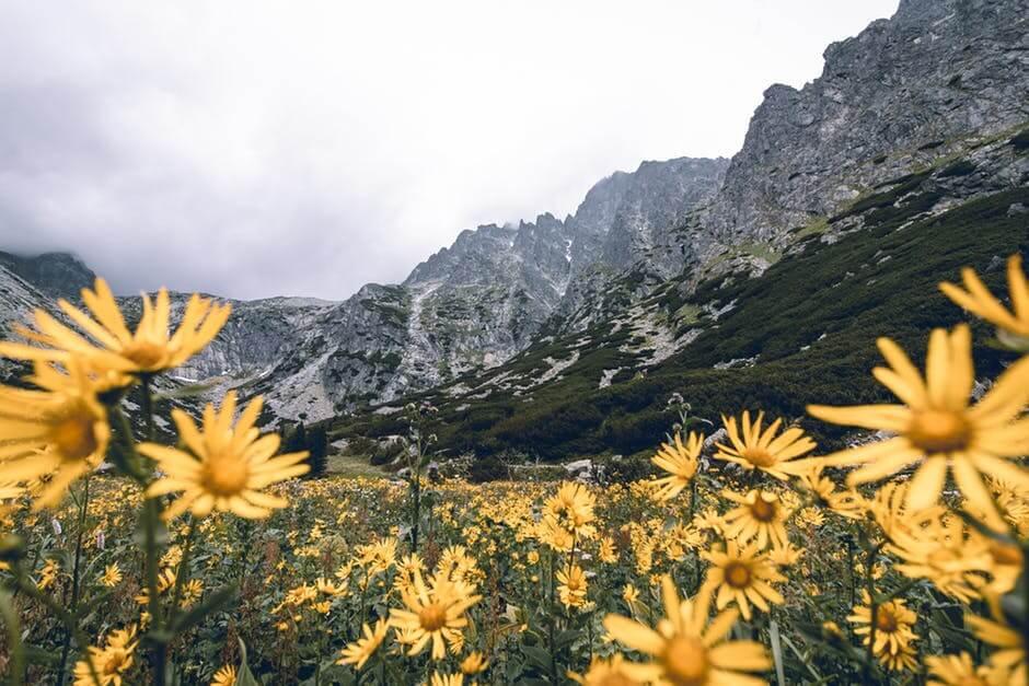 Slovensko a tipy na výlet