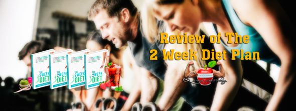 review of the 2 week diet plan