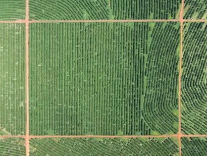 Mapeamento aéreo aumenta produtividade no campo