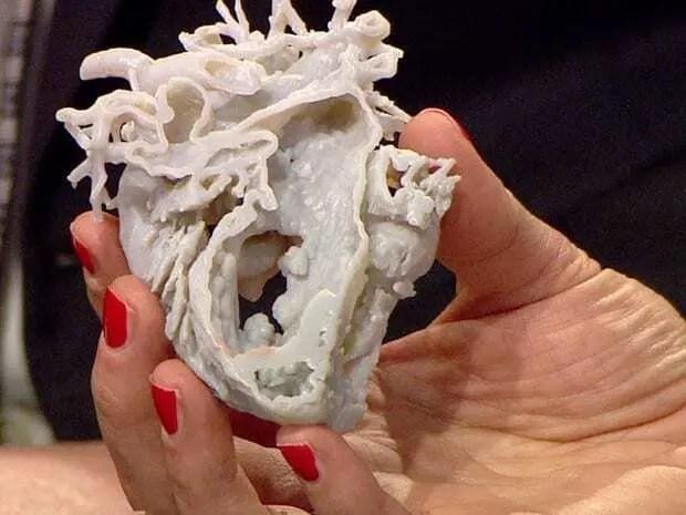 Protótipo de Coração impresso em impressora 3D sendo mostrado cortado no meio. Mão feminina segurando o protótipo. Continue lendo nosso post!!
