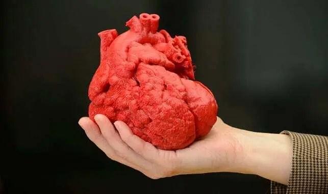 Mão Humana segurando coração impresso através de tecnoligia de impressão 3D. Coração humano na cor vermelha.