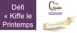 Read more about the article Résultats des votes du Défi « Kiffe le Printemps »